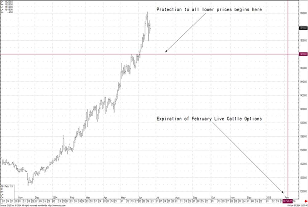 cattle_chart
